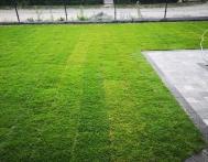 trawnik-z-rolki-Gliwice-04