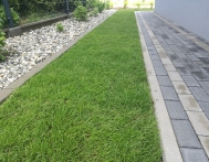 zakladanie-trawnikow-trawa-z-rolki-slask-gliwice-04