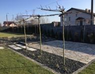 zakladanie-ogrodu-kamien-ogrodowy-trawa-z-rolki-rybnik-05